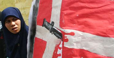 danish flag art